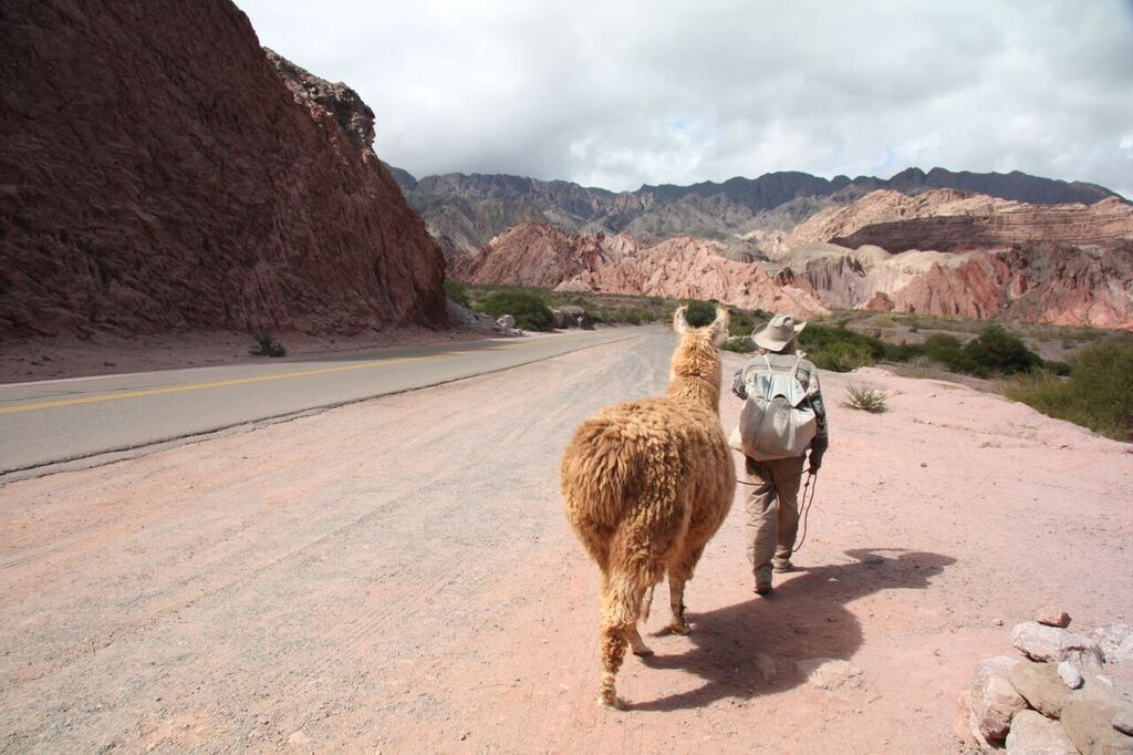 The Experiment in Argentina: Cafayate
