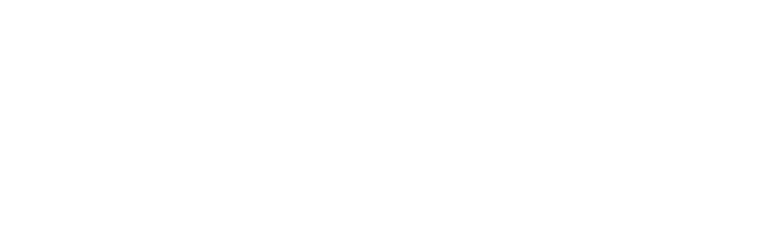 The Experiment Logo